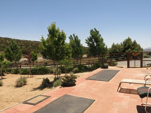 The Deck and Play Area IV