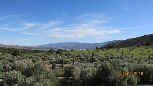 View of Mt. Rose