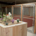 Indoor kennel area.  Another decorative piece w/function blocking excessive stimuli for our dogs.