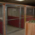 "One of the kennel ""wings"". Note visual field blocked 1/2 way up to reduce sensory overload."